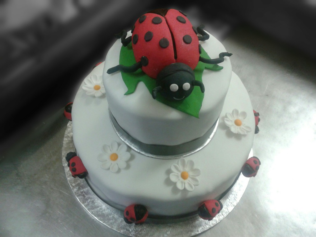 Two Tier Ladybird Cake